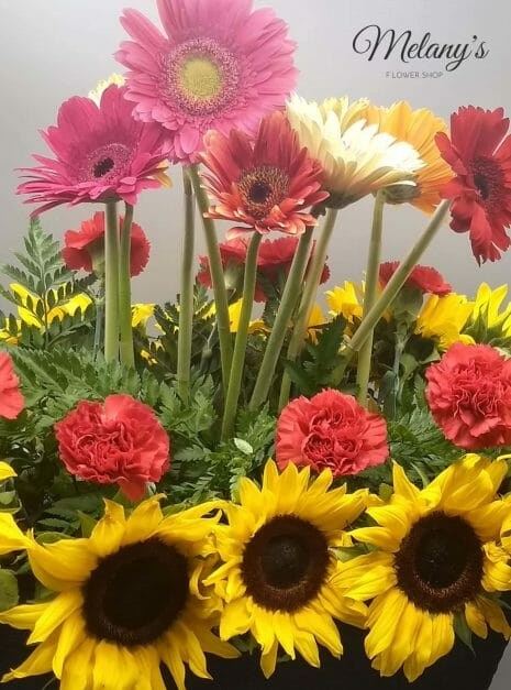 jardinera de colores product 1