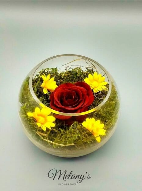 red rose melany flower shop 1 (1)
