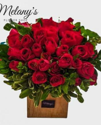 rosas rojas 48 rosas el salvador