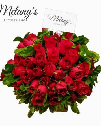 48 rosas en el salvador
