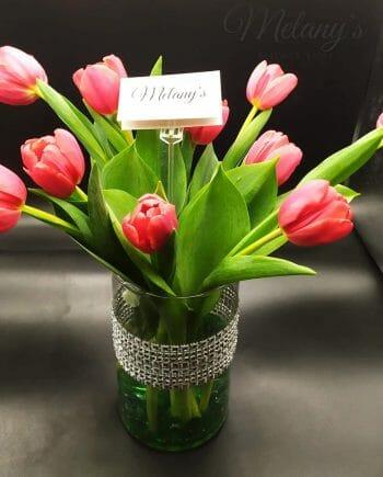 Tulipanes el salvador